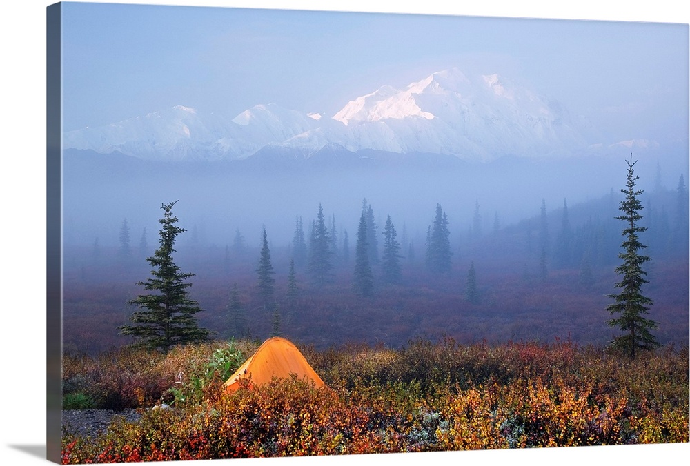 Large Solid-Faced Canvas Print Wall Art Print 30 x 20 entitled Wonder Lake campground with tent in the foreground and Dena... Solid-Faced Canvas Print entitled Wonder Lake campground with tent in the foreground and Denali partially osbsured by fog.  A snow covered mountain range is shown vaguely behind a dense layer of fog that also covers a vast field of scattered pine trees. A tent sits on the ground in the front of the picture and is partially covered by brush.  Multiple sizes available.  Primary colors within this image include Brown, Black, Muted Blue, Pale Blue.  Made in USA.  Satisfaction guaranteed.  Inks used are latex-based and designed to last.  Canvas is handcrafted and made-to-order in the United States using high quality artist-grade canvas.  Canvas depth is 1.25 and includes a finished backing with pre-installed hanging hardware.
