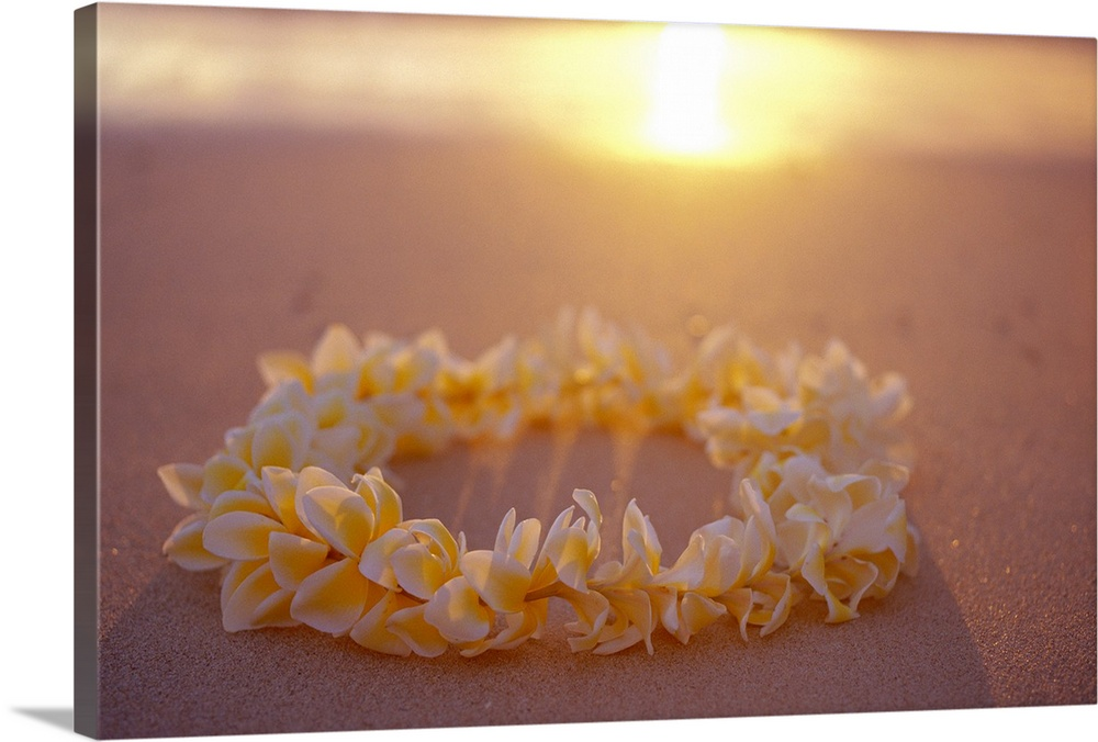Large Solid-Faced Canvas Print Wall Art Print 30 x 20 entitled Yellow Plumeria Lei On Beach With Shadow Solid-Faced Canvas Print entitled Yellow Plumeria Lei On Beach With Shadow.  Multiple sizes available.  Primary colors within this image include Brown, Peach, Black, Gray.  Made in the USA.  Satisfaction guaranteed.  Inks used are latex-based and designed to last.  Canvas is handcrafted and made-to-order in the United States using high quality artist-grade canvas.  Canvas depth is 1.25 and includes a finished backing with pre-installed hanging hardware.