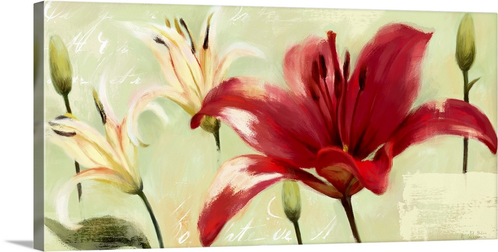 Large Gallery-Wrapped Canvas Wall Art Print 24 x 12 entitled Bursting Lilies Garden II Gallery-Wrapped Canvas entitled Bursting Lilies Garden II.  Home decor artwork of vibrant red and white lilies against a green background.  Multiple sizes available.  Primary colors within this image include Dark Red White Dark Forest Green.  Made in the USA.  Satisfaction guaranteed.  Archival-quality UV-resistant inks.  Canvases have a UVB protection built in to protect against fading and moisture and are designed to last for over 100 years.  Canvas is acid-free and 20 millimeters thick.
