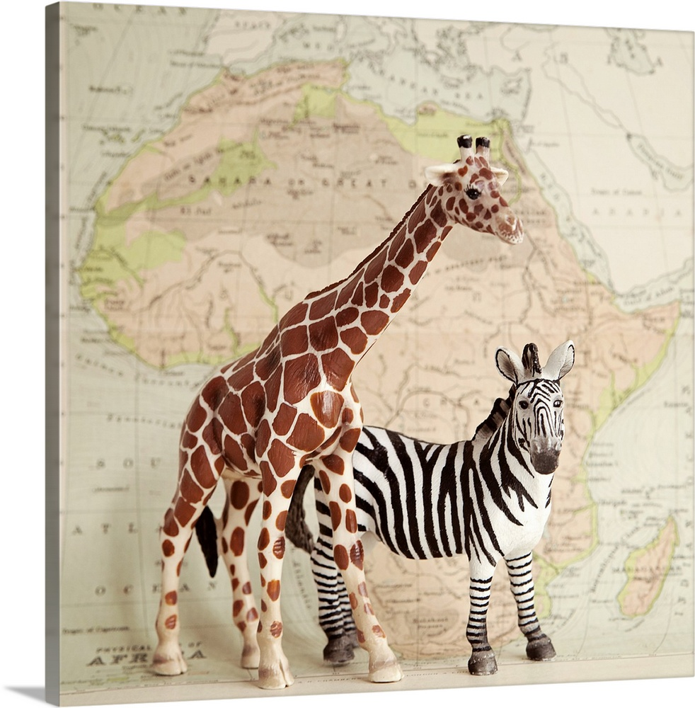 Large Solid-Faced Canvas Print Wall Art Print 20 x 20 entitled On Safari Solid-Faced Canvas Print entitled On Safari.  A toy giraffe and zebra with a vintage map backdrop.  Multiple sizes available.  Primary colors within this image include Brown, Gray, White.  Made in the USA.  All products come with a 365 day workmanship guarantee.  Inks used are latex-based and designed to last.  Archival inks prevent fading and preserve as much fine detail as possible with no over-saturation or color shifting.  Featuring a proprietary design, our canvases produce the tightest corners without any bubbles, ripples, or bumps and will not warp or sag over time.