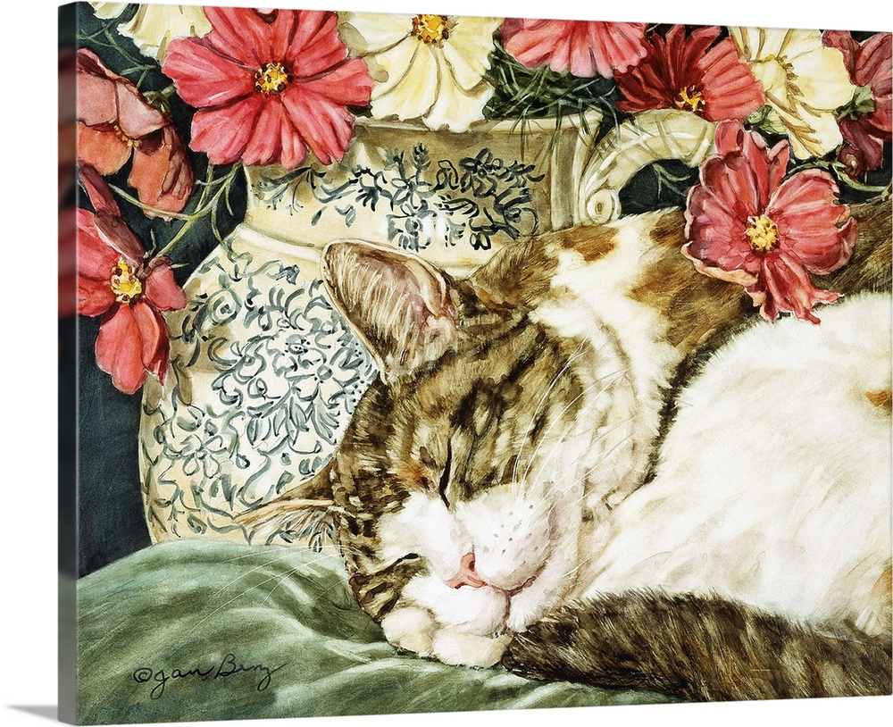 Large Gallery-Wrapped Canvas Wall Art Print 24 x 19 entitled Cosmos Dreams Gallery-Wrapped Canvas entitled Cosmos Dreams.  A cat sleeping on a pillow next to a vase of flowers.  Multiple sizes available.  Primary colors within this image include Brown, Peach, Dark Gray, White.  Made in the USA.  Satisfaction guaranteed.  Archival-quality UV-resistant inks.  Canvas is a 65 polyester, 35 cotton base, with two acrylic latex primer basecoats and a semi-gloss inkjet receptive topcoat.  Canvas is acid-free and 20 millimeters thick.