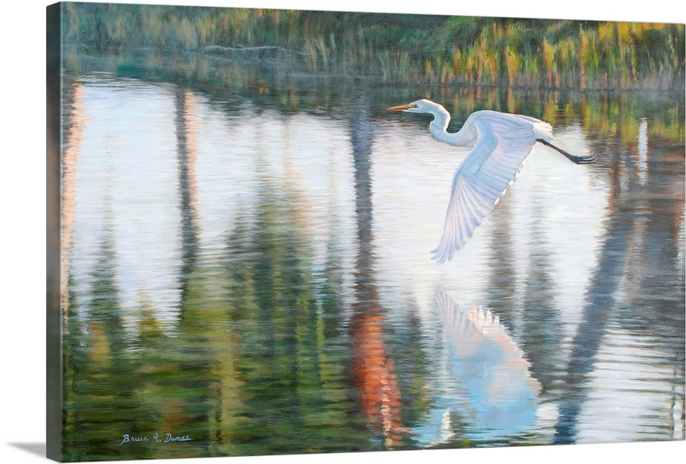 Large Solid-Faced Canvas Print Wall Art Print 36 x 24 entitled Freedom Solid-Faced Canvas Print entitled Freedom.  Contemporary artwork of a white Egret in flight.  Multiple sizes available.  Primary colors within this image include Dark Yellow, Black, Gray, White.  Made in the USA.  Satisfaction guaranteed.  Archival-quality UV-resistant inks.  Canvas is handcrafted and made-to-order in the United States using high quality artist-grade canvas.  Canvas depth is 1.25 and includes a finished backing with pre-installed hanging hardware.