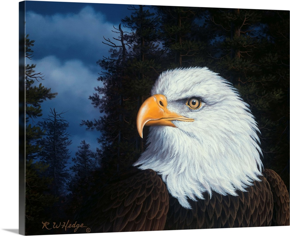 Large Solid-Faced Canvas Print Wall Art Print 45 x 36 entitled The Face Of Freedom Solid-Faced Canvas Print entitled The Face Of Freedom.  An eagle in profile.  Multiple sizes available.  Primary colors within this image include Peach, Black, Silver, Muted Blue.  Made in USA.  All products come with a 365 day workmanship guarantee.  Inks used are latex-based and designed to last.  Featuring a proprietary design, our canvases produce the tightest corners without any bubbles, ripples, or bumps and will not warp or sag over time.  Canvas is handcrafted and made-to-order in the United States using high quality artist-grade canvas.