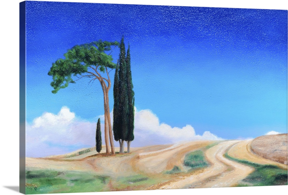 Canvas Kunst Drucken  4 Trees, Picenza, Tuscany, 2002