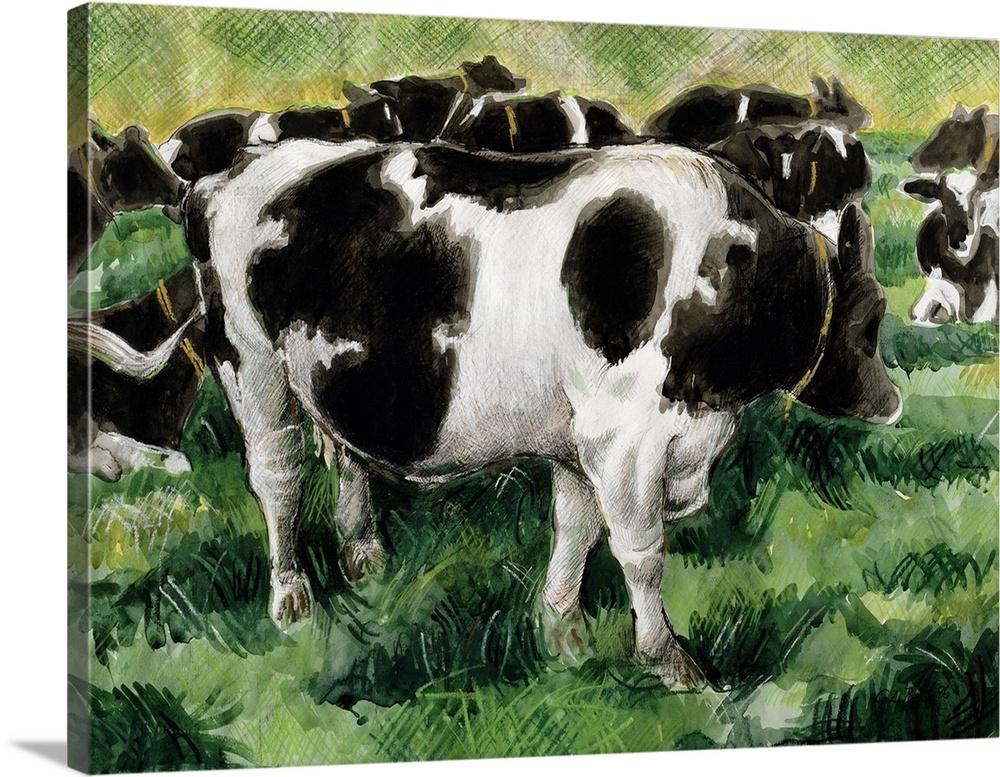 Canvas Kunst Drucken  Friesian Cows