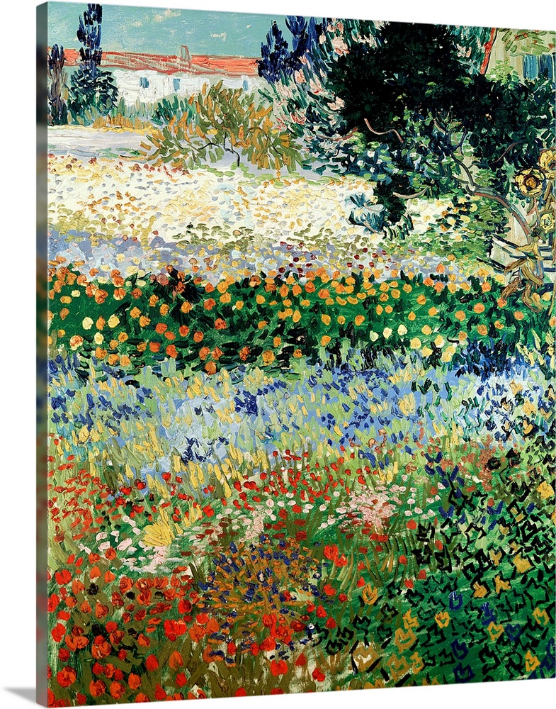 Large Solid-Faced Canvas Print Wall Art Print 24 x 30 entitled Garden in Bloom, Arles, 1888 Solid-Faced Canvas Print entitled Garden in Bloom, Arles, 1888.  Huge classic art portrays a large plot of land filled with a diverse array of brightly colored flowers that extend towards the horizon.  Artist uses a lot of small brush strokes to represent the high volume of flowers in this canvas art.  Multiple sizes available.  Primary colors within this image include Brown, Light Yellow, Black, White.  Made in the USA.  All products come with a 365 day workmanship guarantee.  Archival-quality UV-resistant inks.  Canvas is handcrafted and made-to-order in the United States using high quality artist-grade canvas.  Archival inks prevent fading and preserve as much fine detail as possible with no over-saturation or color shifting.