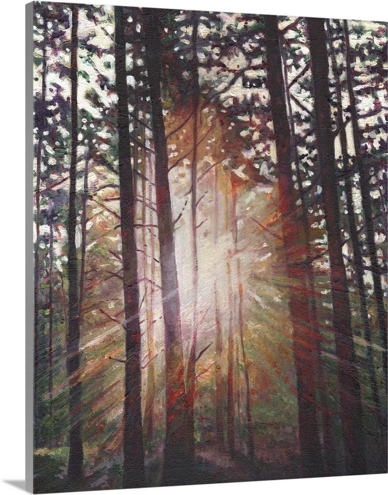 Solid-Faced Canvas drucken wand kunst entitled Sunburst, 2010
