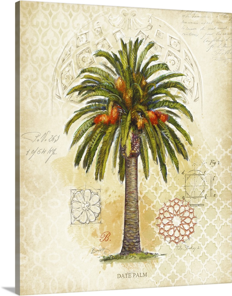 Solid-Faced Canvas Print Wall Art entitled Date Palm
