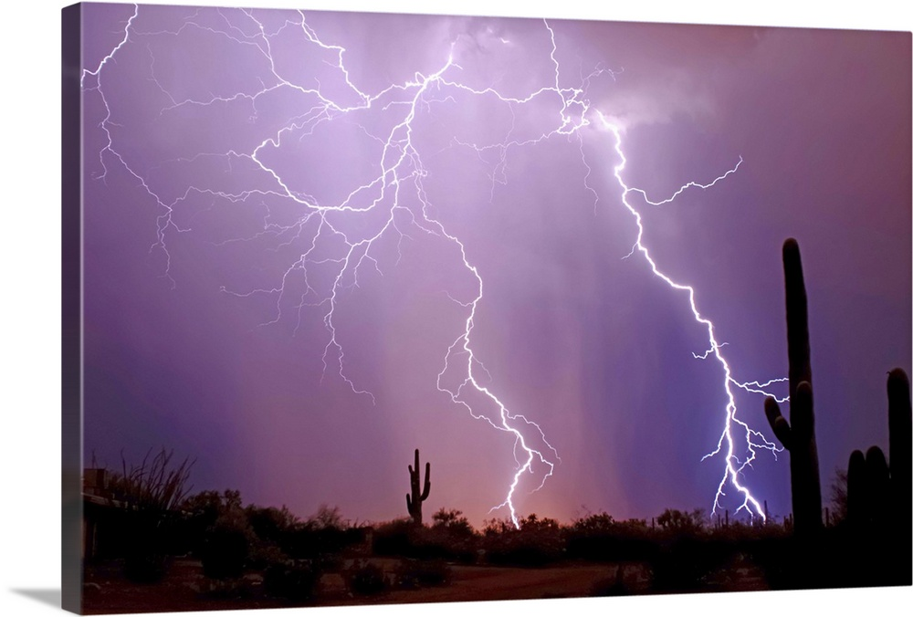 Solid-Faced Canvas Print Wall Art entitled Electrifying