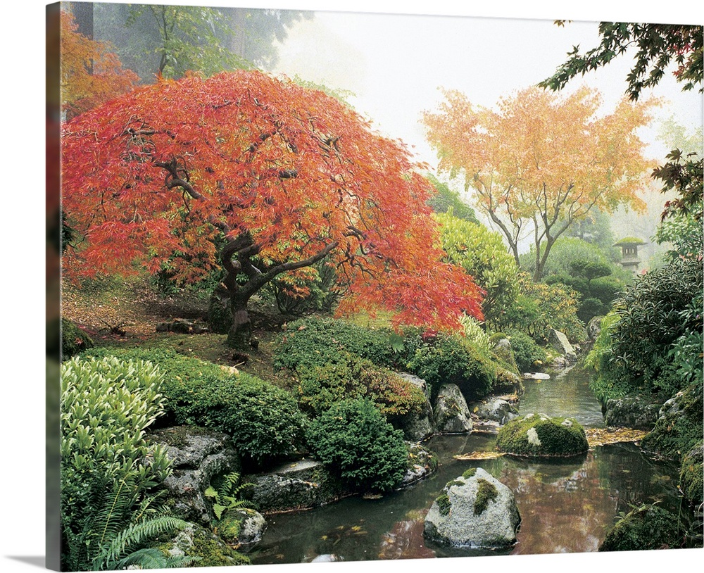Large Solid-Faced Canvas Print Wall Art Print 30 x 24 entitled Japanese Garden I Solid-Faced Canvas Print entitled Japanese Garden I.  Oversized, landscape photograph of a rocky stream surrounded by greenery and fall colored trees and foliage in a Japanese garden.  Multiple sizes available.  Primary colors within this image include Peach, Light Gray, White, Dark Forest Green.  Made in USA.  Satisfaction guaranteed.  Inks used are latex-based and designed to last.  Canvas depth is 1.25 and includes a finished backing with pre-installed hanging hardware.  Archival inks prevent fading and preserve as much fine detail as possible with no over-saturation or color shifting.