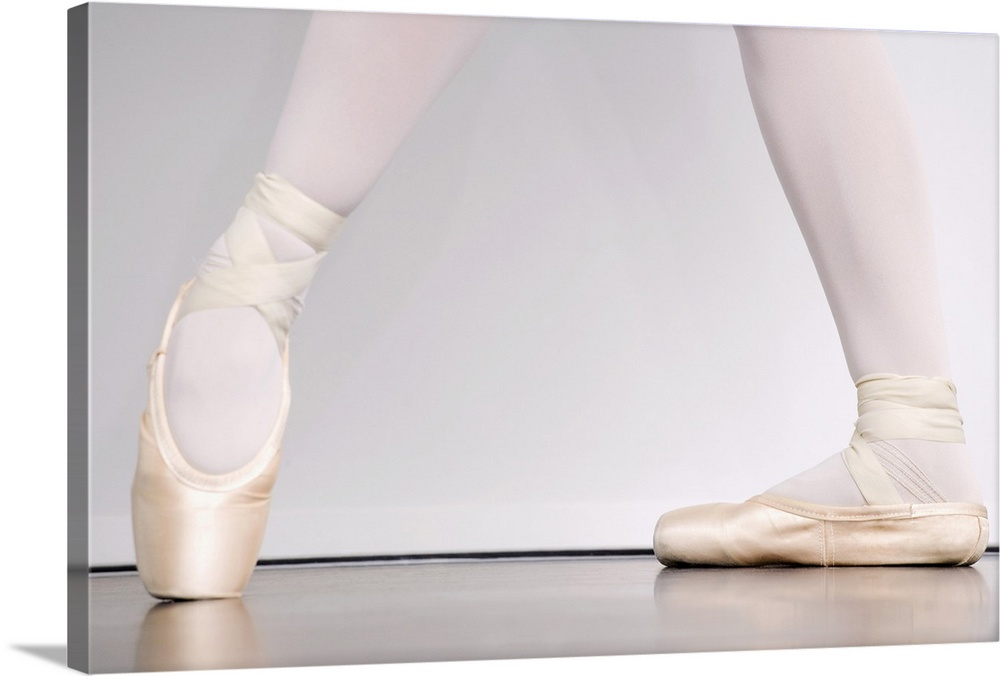 Large Gallery-Wrapped Canvas Wall Art Print 24 x 16 entitled Ballerina in pointe shoes Gallery-Wrapped Canvas entitled Ballerina in pointe shoes.  Multiple sizes available.  Primary colors within this image include Black, Silver.  Made in the USA.  All products come with a 365 day workmanship guarantee.  Inks used are latex-based and designed to last.  Canvas is a 65 polyester, 35 cotton base, with two acrylic latex primer basecoats and a semi-gloss inkjet receptive topcoat.  Canvases have a UVB protection built in to protect against fading and moisture and are designed to last for over 100 years.