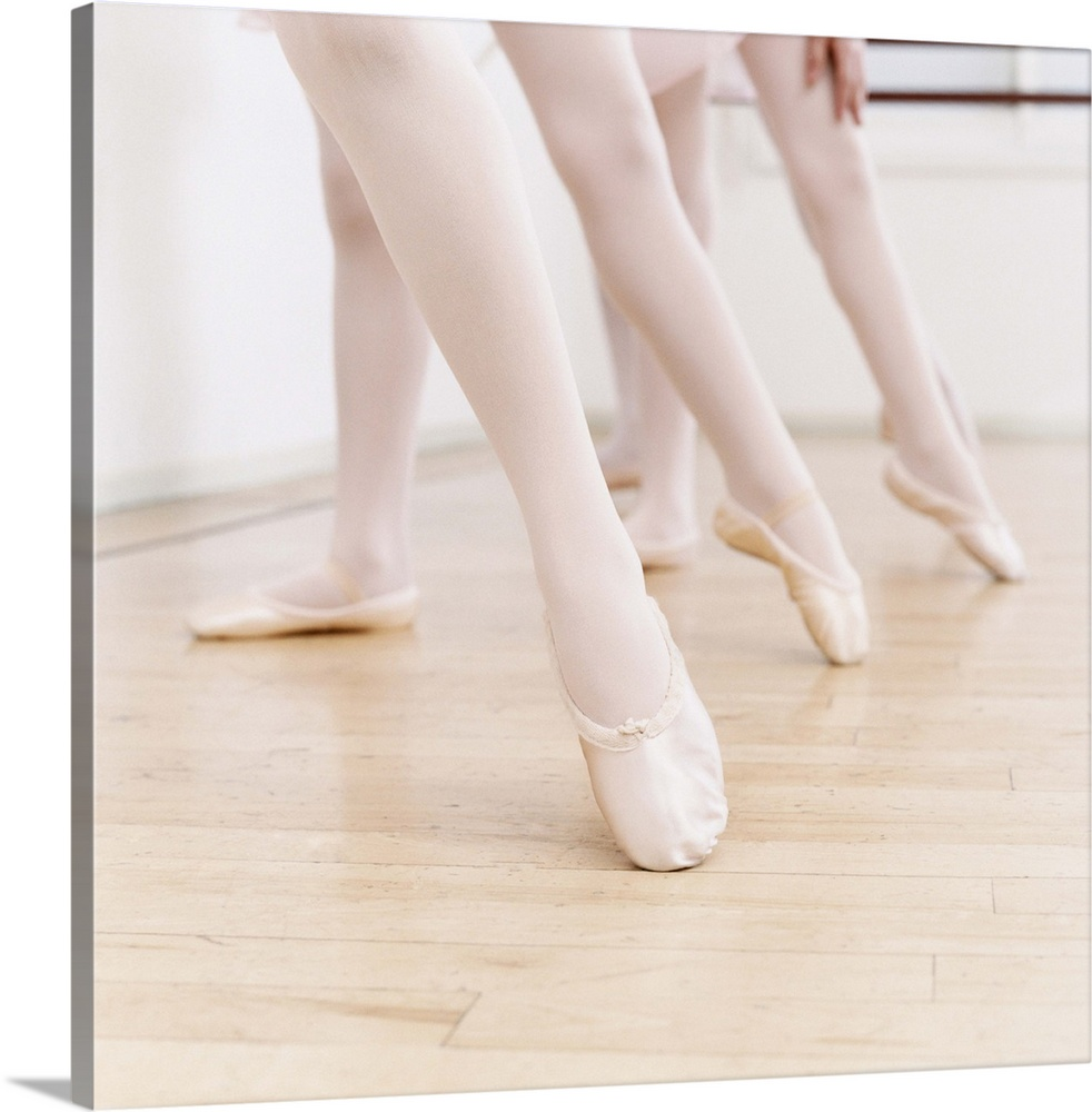 Large Solid-Faced Canvas Print Wall Art Print 20 x 20 entitled Low Section of Three Girls in Ballet Shoes Standing With Th... Solid-Faced Canvas Print entitled Low Section of Three Girls in Ballet Shoes Standing With Their Leg Pointing out.  Multiple sizes available.  Primary colors within this image include Black, Gray, Silver.  Made in USA.  Satisfaction guaranteed.  Inks used are latex-based and designed to last.  Canvas depth is 1.25 and includes a finished backing with pre-installed hanging hardware.  Archival inks prevent fading and preserve as much fine detail as possible with no over-saturation or color shifting.