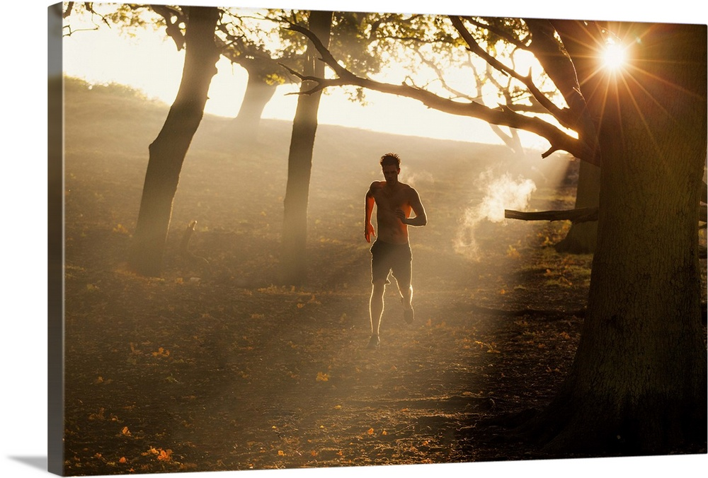 Large Solid-Faced Canvas Print Wall Art Print 30 x 20 entitled Park Fitness Solid-Faced Canvas Print entitled Park Fitness.  An athlete enjoys the atmospheric conditions of Richmond Park during an early morning workout.  Multiple sizes available.  Primary colors within this image include Light Yellow, Black, Gray, White.  Made in USA.  All products come with a 365 day workmanship guarantee.  Inks used are latex-based and designed to last.  Featuring a proprietary design, our canvases produce the tightest corners without any bubbles, ripples, or bumps and will not warp or sag over time.  Archival inks prevent fading and preserve as much fine detail as possible with no over-saturation or color shifting.
