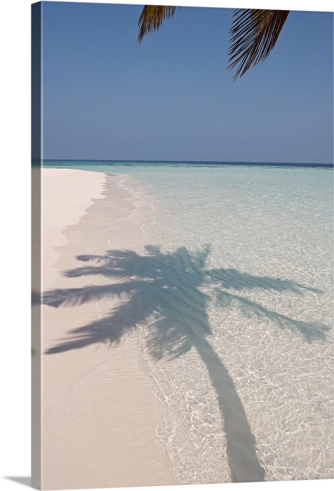 Large Solid-Faced Canvas Print Wall Art Print 20 x 30 entitled Shadow of a palm tree on a deserted island beach Solid-Faced Canvas Print entitled Shadow of a palm tree on a deserted island beach.  The shadow of a large palm tree is photographed as its shown on the clear ocean water and white sand.  Multiple sizes available.  Primary colors within this image include Black, Silver, Gray Blue.  Made in the USA.  All products come with a 365 day workmanship guarantee.  Inks used are latex-based and designed to last.  Archival inks prevent fading and preserve as much fine detail as possible with no over-saturation or color shifting.  Canvas is handcrafted and made-to-order in the United States using high quality artist-grade canvas.