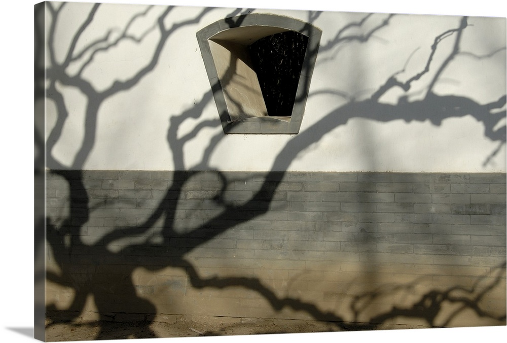 Large Solid-Faced Canvas Print Wall Art Print 30 x 20 entitled Shadow of a tree on a wall build in traditional style Solid-Faced Canvas Print entitled Shadow of a tree on a wall build in traditional style.  Multiple sizes available.  Primary colors within this image include Dark Gray, Silver.  Made in the USA.  All products come with a 365 day workmanship guarantee.  Archival-quality UV-resistant inks.  Featuring a proprietary design, our canvases produce the tightest corners without any bubbles, ripples, or bumps and will not warp or sag over time.  Canvas depth is 1.25 and includes a finished backing with pre-installed hanging hardware.