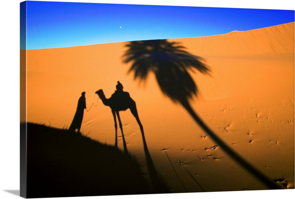Large Solid-Faced Canvas Print Wall Art Print 30 x 20 entitled Shadow Of Camel And Palm Tree Solid-Faced Canvas Print entitled Shadow Of Camel And Palm Tree.  Shadows cast by a tourist camel trek in the sand dunes of Erg Chebbi area of the Sahara desert.  Multiple sizes available.  Primary colors within this image include Orange, Blue, Sky Blue, Black.  Made in USA.  Satisfaction guaranteed.  Archival-quality UV-resistant inks.  Featuring a proprietary design, our canvases produce the tightest corners without any bubbles, ripples, or bumps and will not warp or sag over time.  Canvas is handcrafted and made-to-order in the United States using high quality artist-grade canvas.