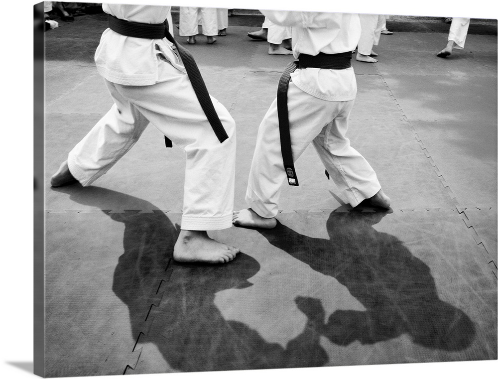 Large Solid-Faced Canvas Print Wall Art Print 40 x 30 entitled Shadow Sparring Solid-Faced Canvas Print entitled Shadow Sparring.  Young athletes engaging in Martial Arts.  Multiple sizes available.  Primary colors within this image include Dark Gray, Light Gray.  Made in the USA.  All products come with a 365 day workmanship guarantee.  Inks used are latex-based and designed to last.  Archival inks prevent fading and preserve as much fine detail as possible with no over-saturation or color shifting.  Canvas is handcrafted and made-to-order in the United States using high quality artist-grade canvas.