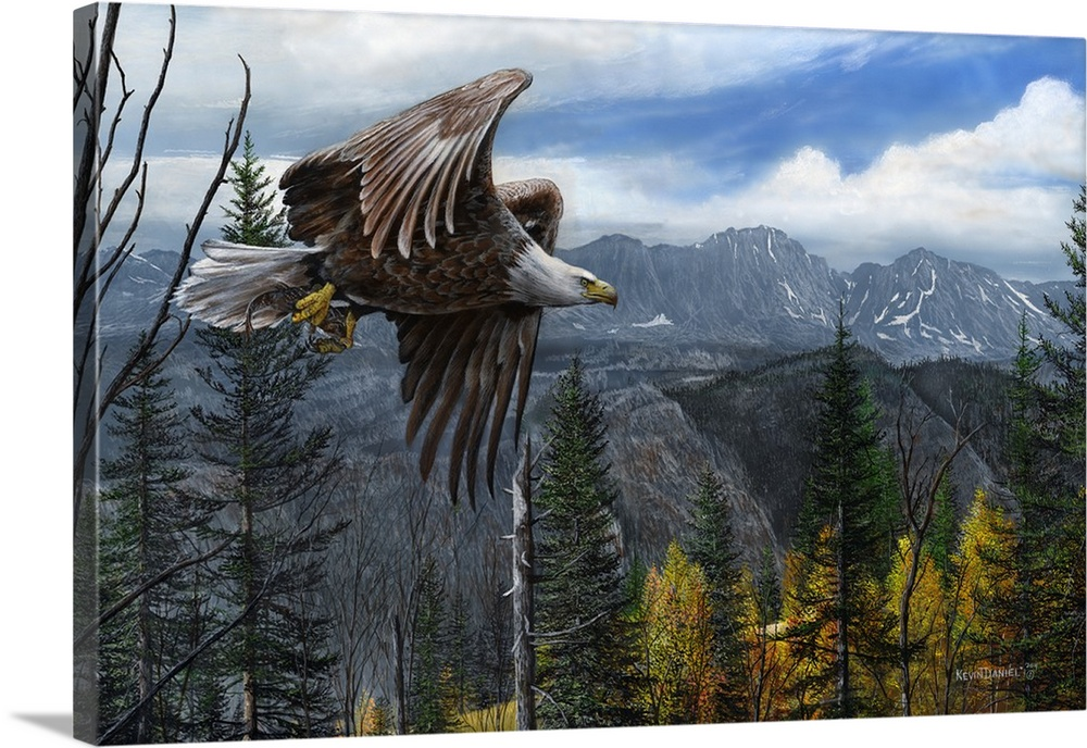 Large Solid-Faced Canvas Print Wall Art Print 36 x 24 entitled May Freedom Forever Fly Solid-Faced Canvas Print entitled May Freedom Forever Fly.  A bald eagle flying over a mountain valley and pine trees.  Multiple sizes available.  Primary colors within this image include Dark Yellow, Black, White, Gray Blue.  Made in USA.  All products come with a 365 day workmanship guarantee.  Inks used are latex-based and designed to last.  Archival inks prevent fading and preserve as much fine detail as possible with no over-saturation or color shifting.  Canvas is handcrafted and made-to-order in the United States using high quality artist-grade canvas.