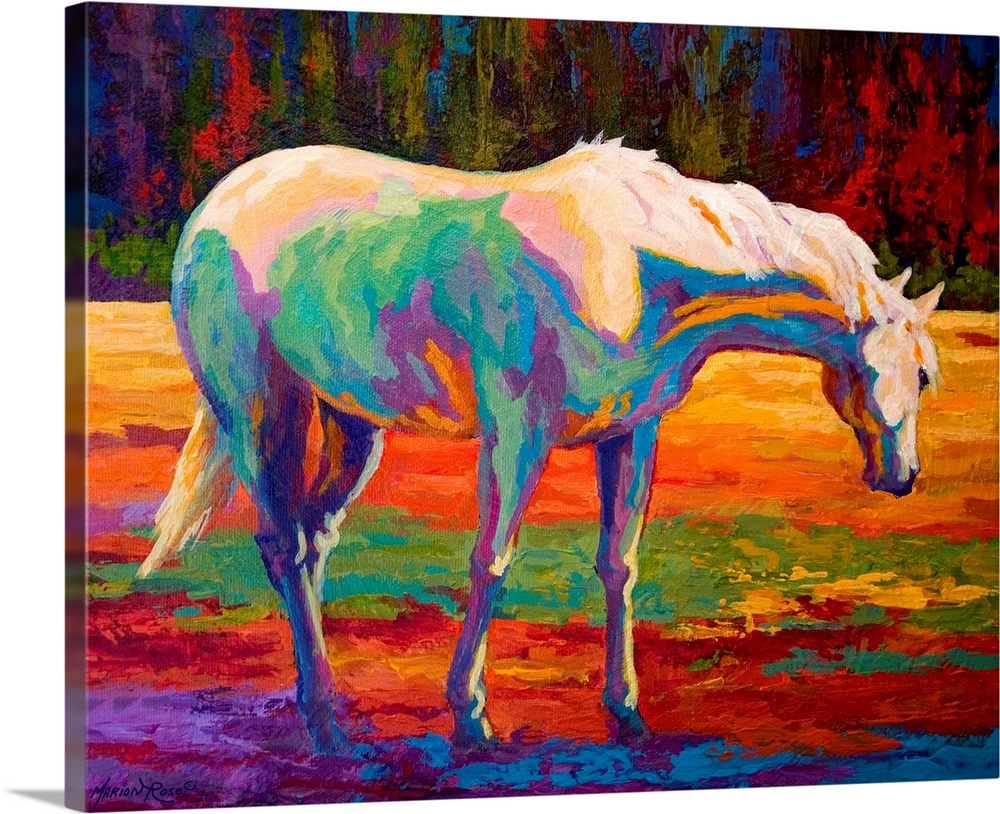 Large Solid-Faced Canvas Print Wall Art Print 30 x 24 entitled White Mare II Solid-Faced Canvas Print entitled White Mare II.  Large landscape painting of a horse grazing in a field.  Painted with a variety of bright colors that are used to create highlights and shadows in the image.  Multiple sizes available.  Primary colors within this image include Orange, Dark Red, White.  Made in the USA.  All products come with a 365 day workmanship guarantee.  Archival-quality UV-resistant inks.  Canvas depth is 1.25 and includes a finished backing with pre-installed hanging hardware.  Archival inks prevent fading and preserve as much fine detail as possible with no over-saturation or color shifting.
