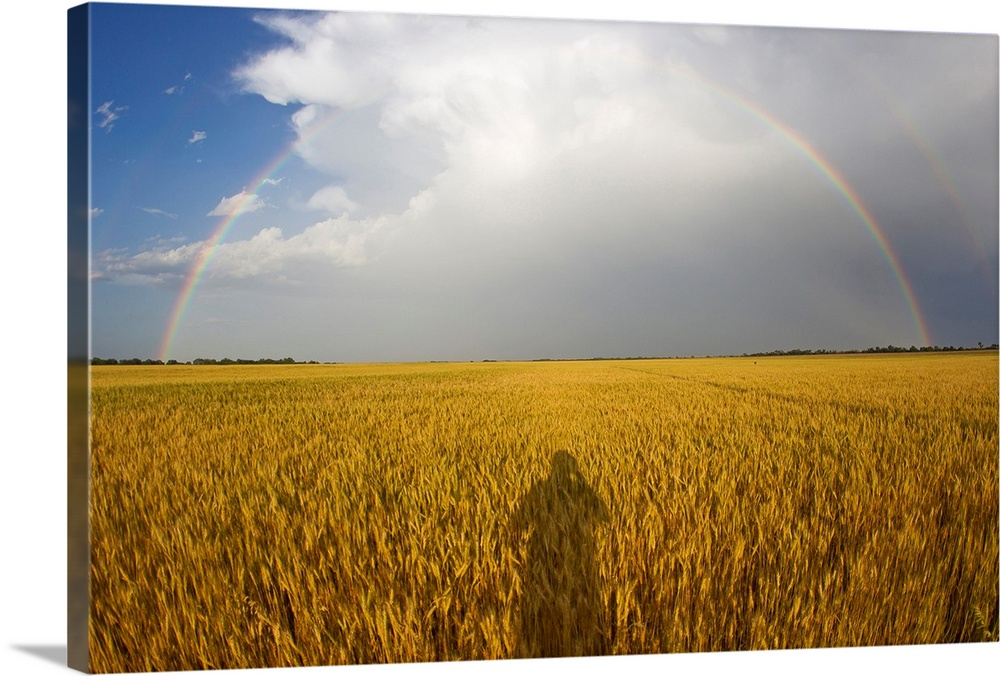 Large Solid-Faced Canvas Print Wall Art Print 30 x 20 entitled A man's shadow on a wheat field with a rainbow behind a pas... Solid-Faced Canvas Print entitled A mans shadow on a wheat field with a rainbow behind a passing storm.  A mans shadow on a wheat field with a rainbow behind a passing storm.  Multiple sizes available.  Primary colors within this image include Brown, Dark Yellow, Light Gray, Muted Blue.  Made in the USA.  Satisfaction guaranteed.  Inks used are latex-based and designed to last.  Canvas is handcrafted and made-to-order in the United States using high quality artist-grade canvas.  Featuring a proprietary design, our canvases produce the tightest corners without any bubbles, ripples, or bumps and will not warp or sag over time.