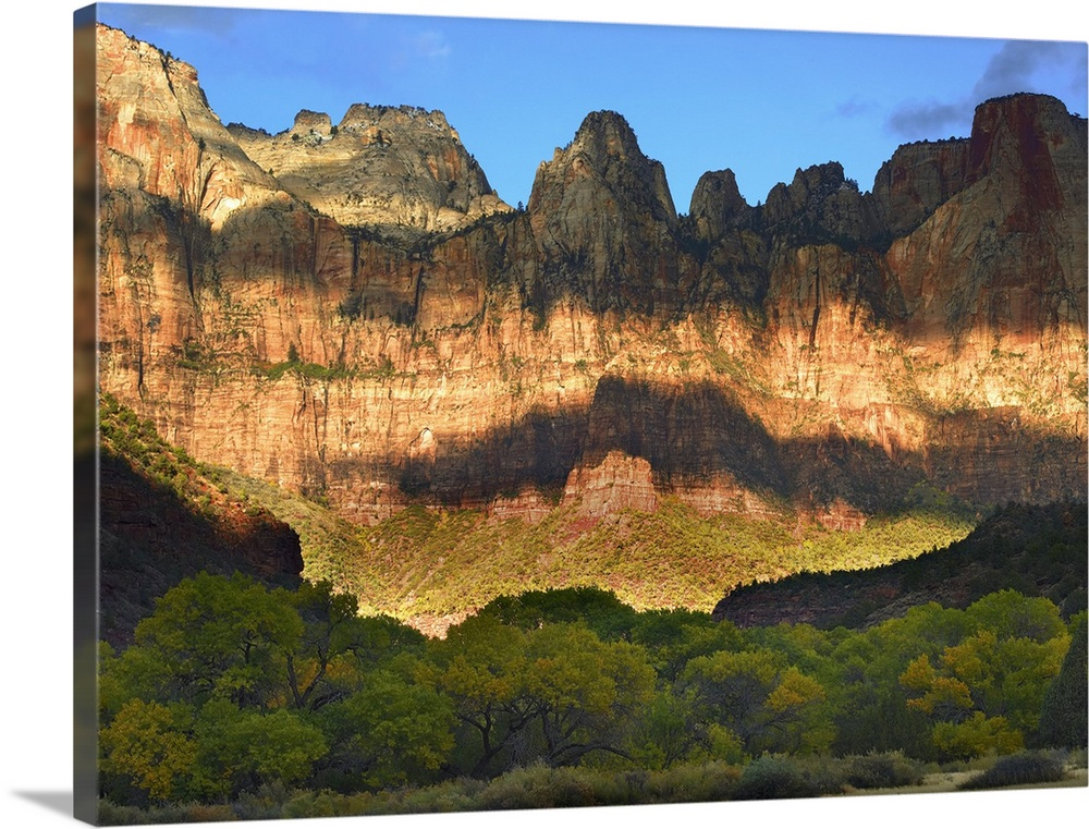 Large Solid-Faced Canvas Print Wall Art Print 40 x 30 entitled Towers of the Virgin with cloud shadows Zion National Park ... Solid-Faced Canvas Print entitled Towers of the Virgin with cloud shadows Zion National Park Utah.  Picture taken of giant cliffs that have cloud shadows covering part of it and a line of trees on the ground in front.  Multiple sizes available.  Primary colors within this image include Peach, Light Yellow, Sky Blue, Dark Forest Green.  Made in the USA.  Satisfaction guaranteed.  Inks used are latex-based and designed to last.  Canvas depth is 1.25 and includes a finished backing with pre-installed hanging hardware.  Archival inks prevent fading and preserve as much fine detail as possible with no over-saturation or color shifting.