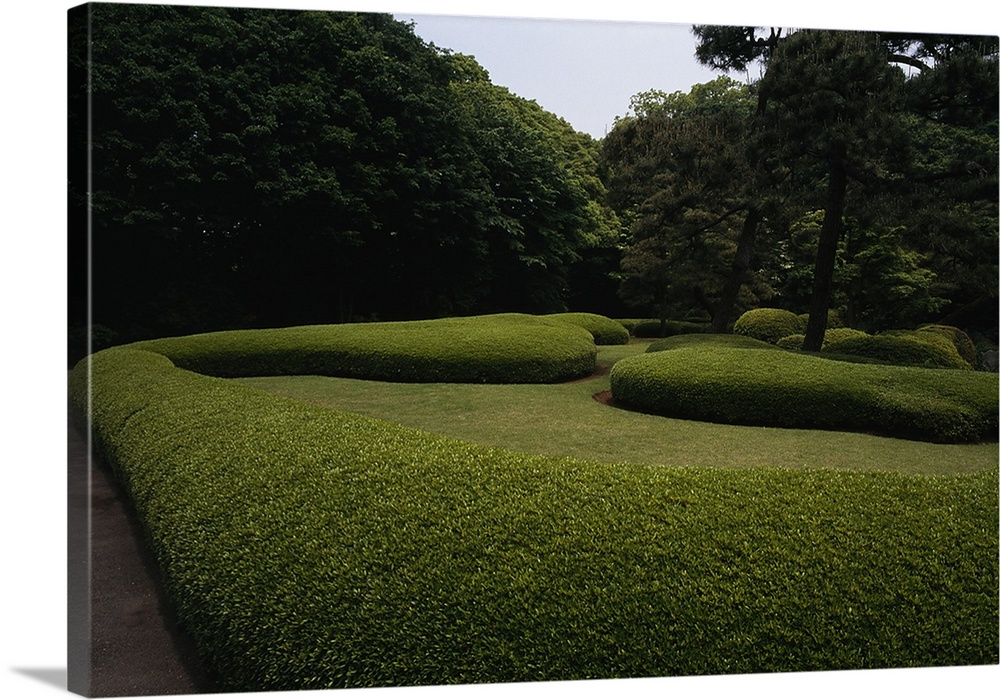 Large Solid-Faced Canvas Print Wall Art Print 30 x 20 entitled Manicured hedges in the gardens of the Imperial Palace, Tok... Solid-Faced Canvas Print entitled Manicured hedges in the gardens of the Imperial Palace, Tokyo, Japan.  Multiple sizes available.  Primary colors within this image include Dark Yellow, Dark Forest Green, Pale Blue.  Made in USA.  All products come with a 365 day workmanship guarantee.  Archival-quality UV-resistant inks.  Canvas is handcrafted and made-to-order in the United States using high quality artist-grade canvas.  Canvas depth is 1.25 and includes a finished backing with pre-installed hanging hardware.