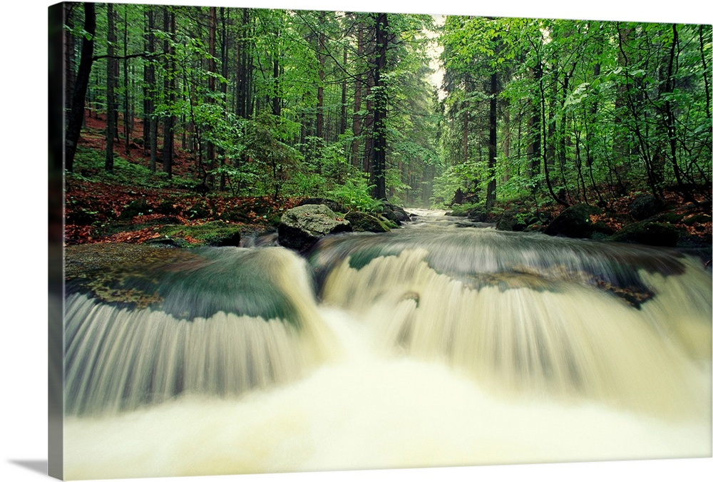 Large Solid-Faced Canvas Print Wall Art Print 30 x 20 entitled Waterfall time exposure,  Bayerischer Wald National Park, G... Solid-Faced Canvas Print entitled Waterfall time exposure,  Bayerischer Wald National Park, Germany.  Big horizontal photograph from the National Geographic Collection of a small waterfall in a creek surrounded by lush, green forest in Bayerischer Wald National Park, Germany.  Multiple sizes available.  Primary colors within this image include Forest Green, Black, White, Lime Green.  Made in USA.  Satisfaction guaranteed.  Archival-quality UV-resistant inks.  Featuring a proprietary design, our canvases produce the tightest corners without any bubbles, ripples, or bumps and will not warp or sag over time.  Canvas is handcrafted and made-to-order in the United States using high quality artist-grade canvas.