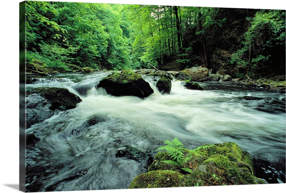 Large Solid-Faced Canvas Print Wall Art Print 30 x 20 entitled Woodland stream and rapids, time exposure, Harz/Hochharz Na... Solid-Faced Canvas Print entitled Woodland stream and rapids, time exposure, HarzHochharz National Park, Germany.  Wall art of a river with rapids flowing through a dense forest with high river banks and vegetation.  Multiple sizes available.  Primary colors within this image include Forest Green, Black, Gray, Lime Green.  Made in the USA.  Satisfaction guaranteed.  Archival-quality UV-resistant inks.  Archival inks prevent fading and preserve as much fine detail as possible with no over-saturation or color shifting.  Canvas is handcrafted and made-to-order in the United States using high quality artist-grade canvas.