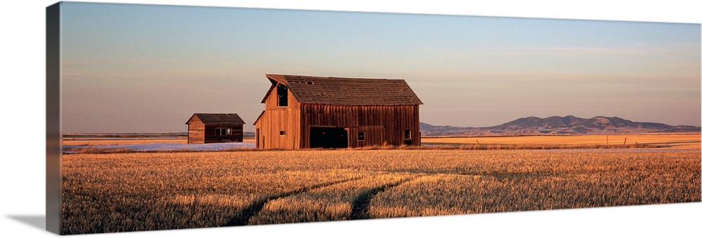 Large Solid-Faced Canvas Print Wall Art Print 48 x 16 entitled Barn in a field, Hobson, Montana Solid-Faced Canvas Print entitled Barn in a field, Hobson, Montana.  Panoramic photo of an old wood slat barn in the middle of a wide open field with the sun casting shadows as it sets.  Multiple sizes available.  Primary colors within this image include Dark Red, Peach, Black, Light Gray.  Made in USA.  Satisfaction guaranteed.  Archival-quality UV-resistant inks.  Archival inks prevent fading and preserve as much fine detail as possible with no over-saturation or color shifting.  Featuring a proprietary design, our canvases produce the tightest corners without any bubbles, ripples, or bumps and will not warp or sag over time.