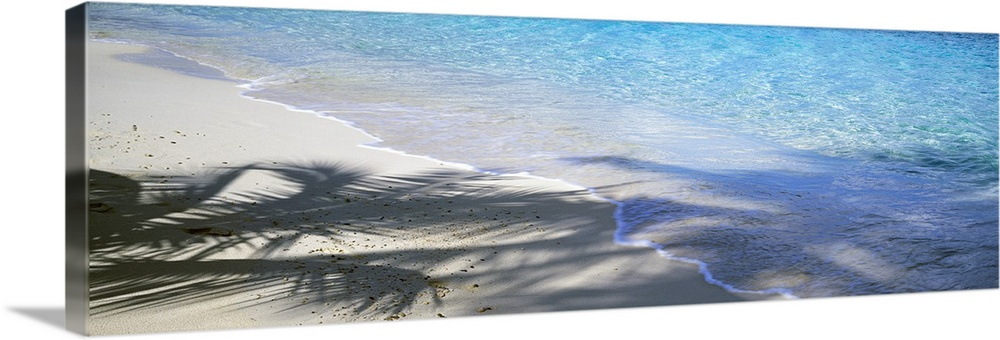 Large Solid-Faced Canvas Print Wall Art Print 48 x 16 entitled Beach US Virgin Islands Solid-Faced Canvas Print entitled Beach US Virgin Islands.  Panoramic shot of a beach with crystal clear water rushing up onto the sand that is partially shadowed by palm trees.  Multiple sizes available.  Primary colors within this image include Dark Gray, Light Gray Blue.  Made in the USA.  Satisfaction guaranteed.  Inks used are latex-based and designed to last.  Archival inks prevent fading and preserve as much fine detail as possible with no over-saturation or color shifting.  Canvas is handcrafted and made-to-order in the United States using high quality artist-grade canvas.