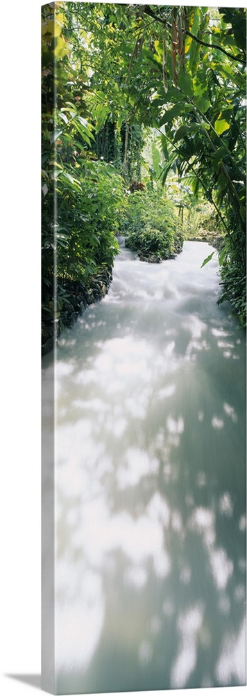 Large Solid-Faced Canvas Print Wall Art Print 16 x 48 entitled Blue Hole Gardens River, Negril, Jamaica Solid-Faced Canvas Print entitled Blue Hole Gardens River, Negril, Jamaica.  Multiple sizes available.  Primary colors within this image include Forest Green, Gray, White, Lime Green.  Made in USA.  Satisfaction guaranteed.  Archival-quality UV-resistant inks.  Featuring a proprietary design, our canvases produce the tightest corners without any bubbles, ripples, or bumps and will not warp or sag over time.  Canvas depth is 1.25 and includes a finished backing with pre-installed hanging hardware.