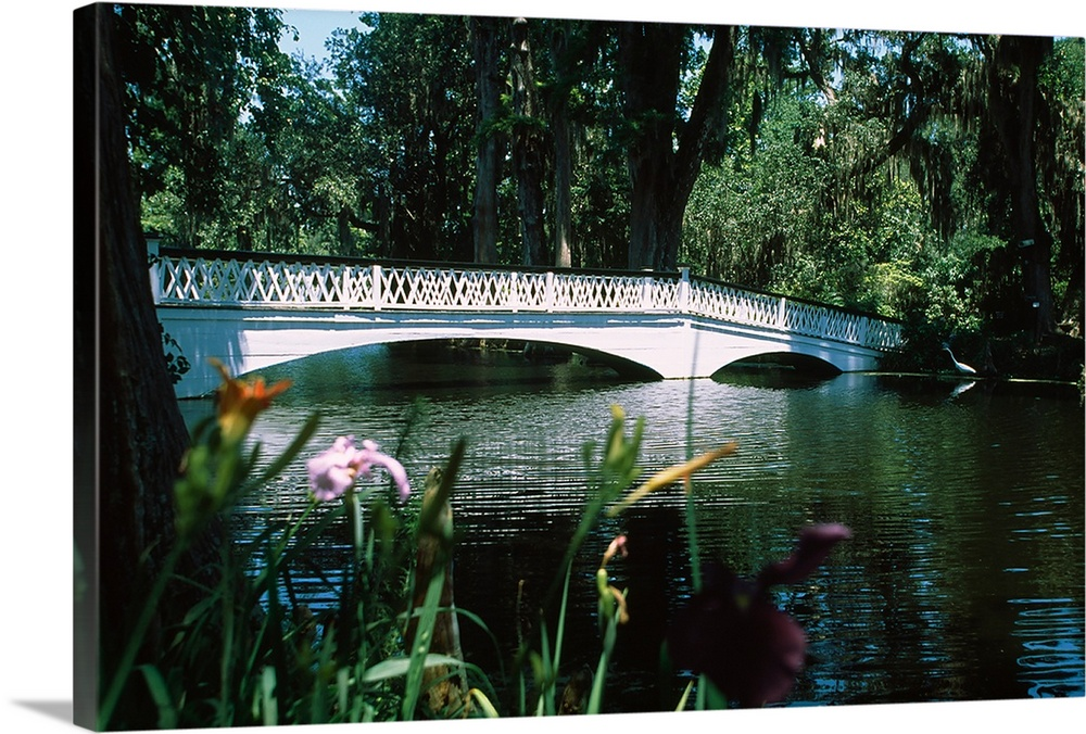 Large Solid-Faced Canvas Print Wall Art Print 30 x 20 entitled Bridge across a swamp, Magnolia Plantation and Gardens, Cha... Solid-Faced Canvas Print entitled Bridge across a swamp, Magnolia Plantation and Gardens, Charleston, Charleston County, South Carolina,.  Multiple sizes available.  Primary colors within this image include Black, Gray, Pale Blue.  Made in USA.  Satisfaction guaranteed.  Archival-quality UV-resistant inks.  Canvas depth is 1.25 and includes a finished backing with pre-installed hanging hardware.  Archival inks prevent fading and preserve as much fine detail as possible with no over-saturation or color shifting.