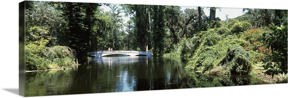 Large Solid-Faced Canvas Print Wall Art Print 48 x 16 entitled Bridge across a swamp, Magnolia Plantation and Gardens, Cha... Solid-Faced Canvas Print entitled Bridge across a swamp, Magnolia Plantation and Gardens, Charleston, Charleston County, South Carolina,.  Multiple sizes available.  Primary colors within this image include Light Green, Gray, White, Dark Forest Green.  Made in the USA.  All products come with a 365 day workmanship guarantee.  Archival-quality UV-resistant inks.  Featuring a proprietary design, our canvases produce the tightest corners without any bubbles, ripples, or bumps and will not warp or sag over time.  Archival inks prevent fading and preserve as much fine detail as possible with no over-saturation or color shifting.
