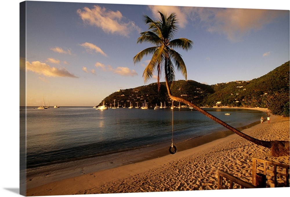 Large Solid-Faced Canvas Print Wall Art Print 30 x 20 entitled Cane Garden Bay Tortola British Virgin Islands Solid-Faced Canvas Print entitled Cane Garden Bay Tortola British Virgin Islands.  Photograph of beach front with palm tree that has a tire swing.  There are sailboats in the water and along the waters edge.  Multiple sizes available.  Primary colors within this image include Brown, Peach, Black, Light Gray.  Made in the USA.  Satisfaction guaranteed.  Inks used are latex-based and designed to last.  Featuring a proprietary design, our canvases produce the tightest corners without any bubbles, ripples, or bumps and will not warp or sag over time.  Canvas depth is 1.25 and includes a finished backing with pre-installed hanging hardware.
