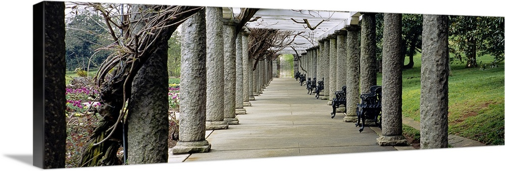 Large Solid-Faced Canvas Print Wall Art Print 48 x 16 entitled Columns along a path in a garden, Maymont, Richmond, Virginia Solid-Faced Canvas Print entitled Columns along a path in a garden, Maymont, Richmond, Virginia.  Multiple sizes available.  Primary colors within this image include Forest Green, Black, Gray, White.  Made in USA.  All products come with a 365 day workmanship guarantee.  Inks used are latex-based and designed to last.  Featuring a proprietary design, our canvases produce the tightest corners without any bubbles, ripples, or bumps and will not warp or sag over time.  Canvas depth is 1.25 and includes a finished backing with pre-installed hanging hardware.