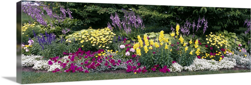 Large Solid-Faced Canvas Print Wall Art Print 48 x 16 entitled Flowering Border Niagara Parks Botanical Gardens Ontario Ca... Solid-Faced Canvas Print entitled Flowering Border Niagara Parks Botanical Gardens Ontario Canada.  Multiple sizes available.  Primary colors within this image include Plum, Light Yellow, Black, White.  Made in USA.  All products come with a 365 day workmanship guarantee.  Inks used are latex-based and designed to last.  Canvas is handcrafted and made-to-order in the United States using high quality artist-grade canvas.  Canvas depth is 1.25 and includes a finished backing with pre-installed hanging hardware.