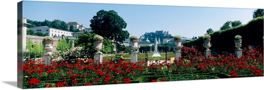 Large Solid-Faced Canvas Print Wall Art Print 48 x 16 entitled Flowers in a formal garden, Mirabell Gardens, Salzburg, Sal... Solid-Faced Canvas Print entitled Flowers in a formal garden, Mirabell Gardens, Salzburg, Salzkammergut, Austria.  Multiple sizes available.  Primary colors within this image include Dark Red, Black, Muted Blue, Pale Blue.  Made in USA.  All products come with a 365 day workmanship guarantee.  Inks used are latex-based and designed to last.  Featuring a proprietary design, our canvases produce the tightest corners without any bubbles, ripples, or bumps and will not warp or sag over time.  Archival inks prevent fading and preserve as much fine detail as possible with no over-saturation or color shifting.