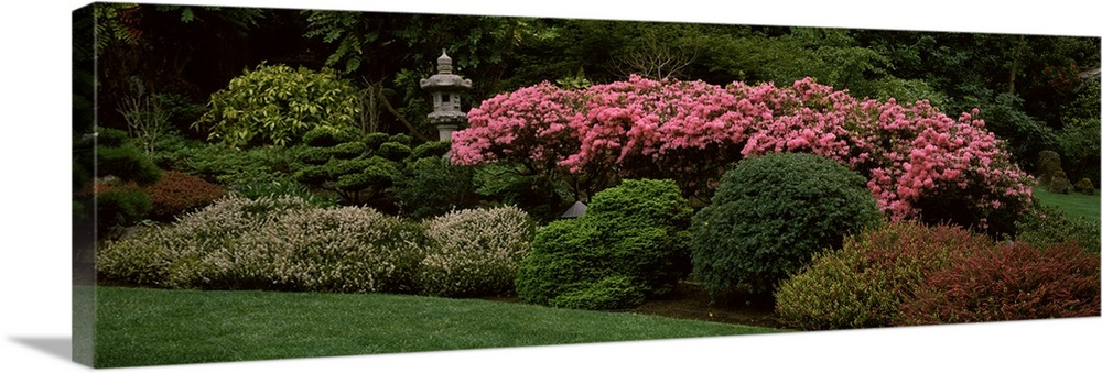 Large Solid-Faced Canvas Print Wall Art Print 48 x 16 entitled Flowers in a garden, Butchart Gardens, Brentwood Bay, Vanco... Solid-Faced Canvas Print entitled Flowers in a garden, Butchart Gardens, Brentwood Bay, Vancouver Island, British Columbia, Canada.  Multiple sizes available.  Primary colors within this image include Dark Red, Pink, Black, Dark Forest Green.  Made in the USA.  All products come with a 365 day workmanship guarantee.  Archival-quality UV-resistant inks.  Canvas depth is 1.25 and includes a finished backing with pre-installed hanging hardware.  Archival inks prevent fading and preserve as much fine detail as possible with no over-saturation or color shifting.