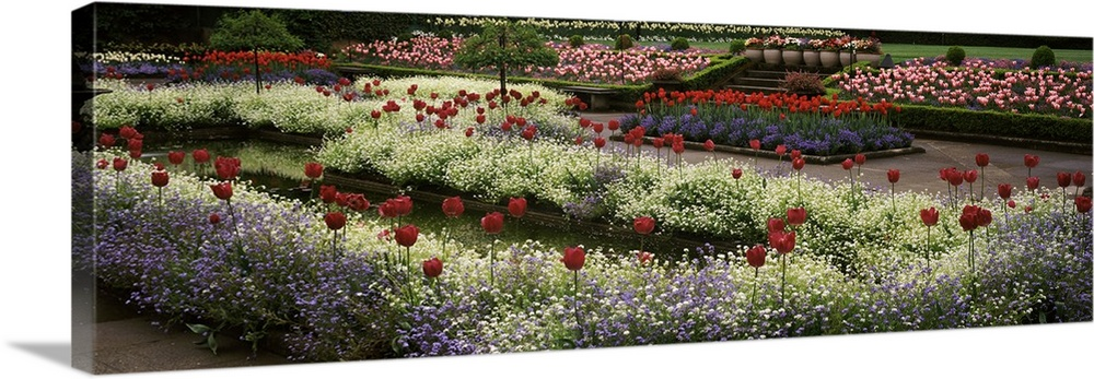 Large Solid-Faced Canvas Print Wall Art Print 48 x 16 entitled Flowers in a garden, Butchart Gardens, Brentwood Bay, Vanco... Solid-Faced Canvas Print entitled Flowers in a garden, Butchart Gardens, Brentwood Bay, Vancouver Island, British Columbia, Canada.  Multiple sizes available.  Primary colors within this image include Dark Red, Black, Light Gray.  Made in the USA.  All products come with a 365 day workmanship guarantee.  Archival-quality UV-resistant inks.  Canvas is handcrafted and made-to-order in the United States using high quality artist-grade canvas.  Canvas depth is 1.25 and includes a finished backing with pre-installed hanging hardware.