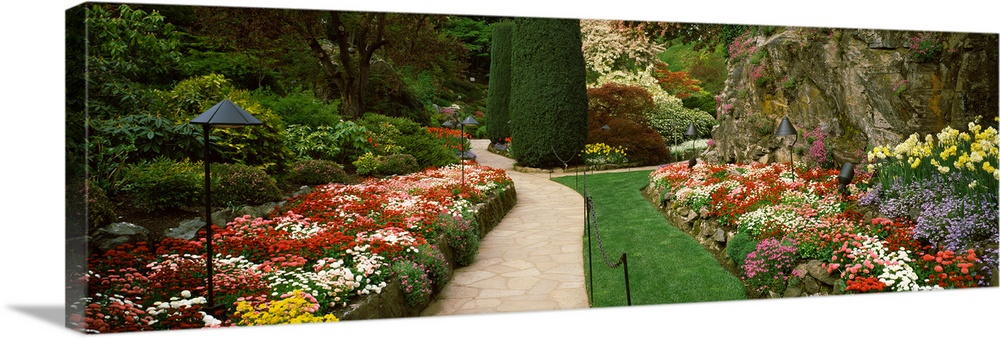 Large Solid-Faced Canvas Print Wall Art Print 48 x 16 entitled Flowers in a garden, Butchart Gardens, Brentwood Bay, Vanco... Solid-Faced Canvas Print entitled Flowers in a garden, Butchart Gardens, Brentwood Bay, Vancouver Island, British Columbia, Canada.  Multiple sizes available.  Primary colors within this image include Dark Red, Dark Yellow, Silver, Dark Forest Green.  Made in USA.  Satisfaction guaranteed.  Inks used are latex-based and designed to last.  Archival inks prevent fading and preserve as much fine detail as possible with no over-saturation or color shifting.  Featuring a proprietary design, our canvases produce the tightest corners without any bubbles, ripples, or bumps and will not warp or sag over time.