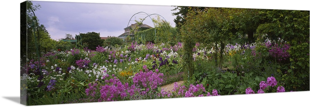 Large Solid-Faced Canvas Print Wall Art Print 48 x 16 entitled Flowers in a garden, Foundation Claude Monet, Giverny, France Solid-Faced Canvas Print entitled Flowers in a garden, Foundation Claude Monet, Giverny, France.  Panoramic picture taken of a thick garden that is filled with green foliage and purple and white flowers.  Multiple sizes available.  Primary colors within this image include Gray, Light Gray, Silver, Dark Forest Green.  Made in USA.  All products come with a 365 day workmanship guarantee.  Inks used are latex-based and designed to last.  Canvas is handcrafted and made-to-order in the United States using high quality artist-grade canvas.  Featuring a proprietary design, our canvases produce the tightest corners without any bubbles, ripples, or bumps and will not warp or sag over time.
