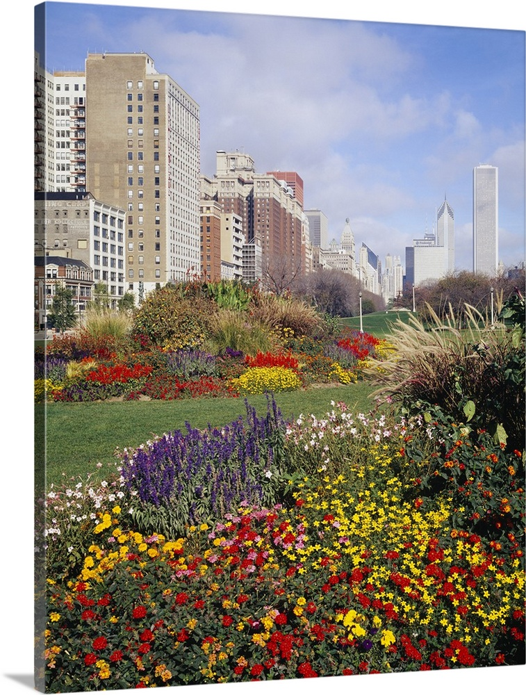 Large Solid-Faced Canvas Print Wall Art Print 24 x 30 entitled Flowers in a garden, Grant Park, Michigan Avenue, Chicago, ... Solid-Faced Canvas Print entitled Flowers in a garden, Grant Park, Michigan Avenue, Chicago, Illinois.  Multiple sizes available.  Primary colors within this image include Dark Red, Brown, Light Yellow, Dark Forest Green.  Made in the USA.  All products come with a 365 day workmanship guarantee.  Archival-quality UV-resistant inks.  Archival inks prevent fading and preserve as much fine detail as possible with no over-saturation or color shifting.  Canvas depth is 1.25 and includes a finished backing with pre-installed hanging hardware.