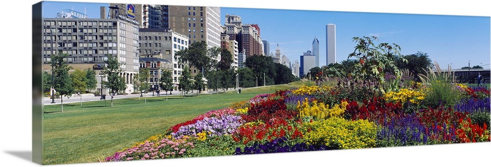 Large Solid-Faced Canvas Print Wall Art Print 48 x 16 entitled Flowers in a garden, Welcome Garden, Grant Park, Michigan A... Solid-Faced Canvas Print entitled Flowers in a garden, Welcome Garden, Grant Park, Michigan Avenue, Roosevelt Road, Chicago, Cook County, Illinois.  Multiple sizes available.  Primary colors within this image include Yellow, Dark Red, Brown, Sky Blue.  Made in the USA.  All products come with a 365 day workmanship guarantee.  Inks used are latex-based and designed to last.  Canvas is handcrafted and made-to-order in the United States using high quality artist-grade canvas.  Archival inks prevent fading and preserve as much fine detail as possible with no over-saturation or color shifting.