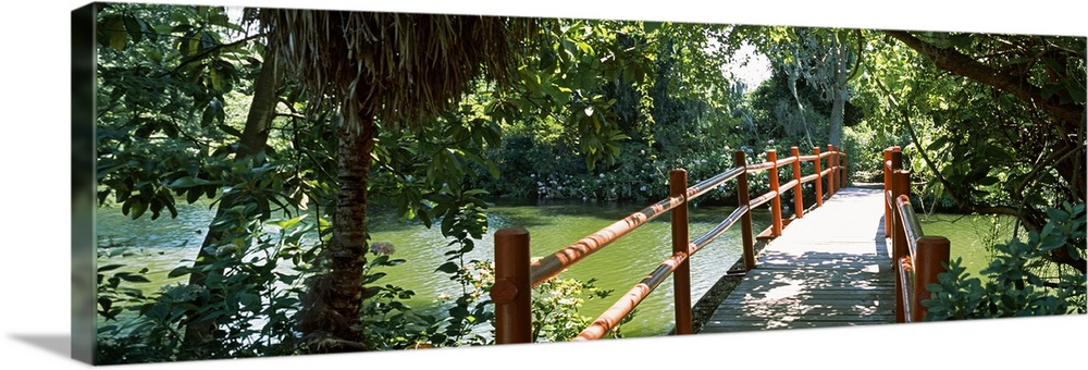 Solid-Faced Canvas Print Wall Art entitled Footbridge over a swamp, Magnolia