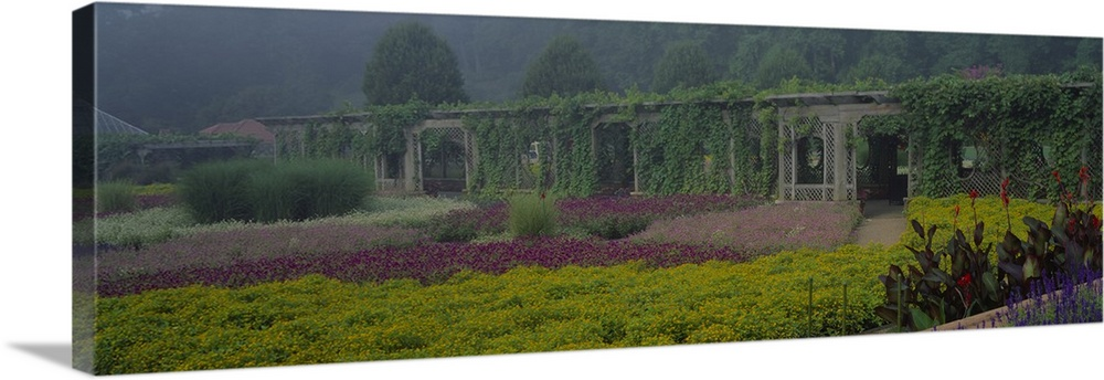 Large Solid-Faced Canvas Print Wall Art Print 48 x 16 entitled Garden Mist Biltmore Estate Ashville NC Solid-Faced Canvas Print entitled Garden Mist Biltmore Estate Ashville NC.  Multiple sizes available.  Primary colors within this image include Dark Yellow, Black, Gray.  Made in the USA.  Satisfaction guaranteed.  Inks used are latex-based and designed to last.  Featuring a proprietary design, our canvases produce the tightest corners without any bubbles, ripples, or bumps and will not warp or sag over time.  Archival inks prevent fading and preserve as much fine detail as possible with no over-saturation or color shifting.