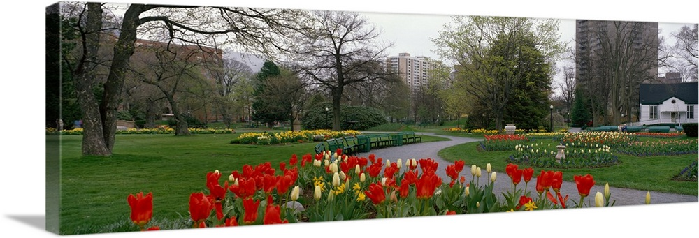 Large Solid-Faced Canvas Print Wall Art Print 48 x 16 entitled Halifax Public Garden Halifax Nova Scotia Canada Solid-Faced Canvas Print entitled Halifax Public Garden Halifax Nova Scotia Canada.  Multiple sizes available.  Primary colors within this image include Dark Red, Forest Green, Black, White.  Made in the USA.  All products come with a 365 day workmanship guarantee.  Inks used are latex-based and designed to last.  Canvas depth is 1.25 and includes a finished backing with pre-installed hanging hardware.  Canvas is handcrafted and made-to-order in the United States using high quality artist-grade canvas.