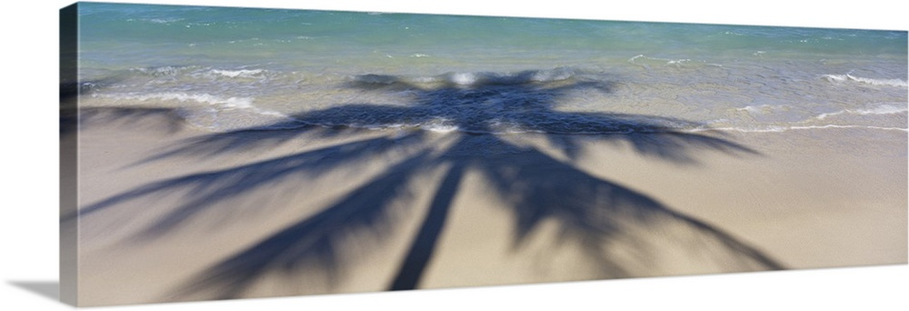 Large Solid-Faced Canvas Print Wall Art Print 48 x 16 entitled High angle view of shadow of a tree on the beach, Hawaii Solid-Faced Canvas Print entitled High angle view of shadow of a tree on the beach, Hawaii.  Panoramic photograph of palm tree silhouette on shoreline.  Multiple sizes available.  Primary colors within this image include Silver, Dark Navy Blue.  Made in USA.  Satisfaction guaranteed.  Archival-quality UV-resistant inks.  Canvas is handcrafted and made-to-order in the United States using high quality artist-grade canvas.  Canvas depth is 1.25 and includes a finished backing with pre-installed hanging hardware.