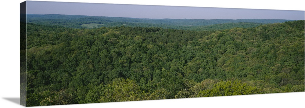 Large Solid-Faced Canvas Print Wall Art Print 48 x 16 entitled High angle view of trees in a forest, Garden of the Gods Re... Solid-Faced Canvas Print entitled High angle view of trees in a forest, Garden of the Gods Recreation Area, Shawnee National Forest, Illinois.  Multiple sizes available.  Primary colors within this image include Dark Yellow, Dark Forest Green, Light Gray Blue.  Made in the USA.  All products come with a 365 day workmanship guarantee.  Inks used are latex-based and designed to last.  Canvas depth is 1.25 and includes a finished backing with pre-installed hanging hardware.  Featuring a proprietary design, our canvases produce the tightest corners without any bubbles, ripples, or bumps and will not warp or sag over time.