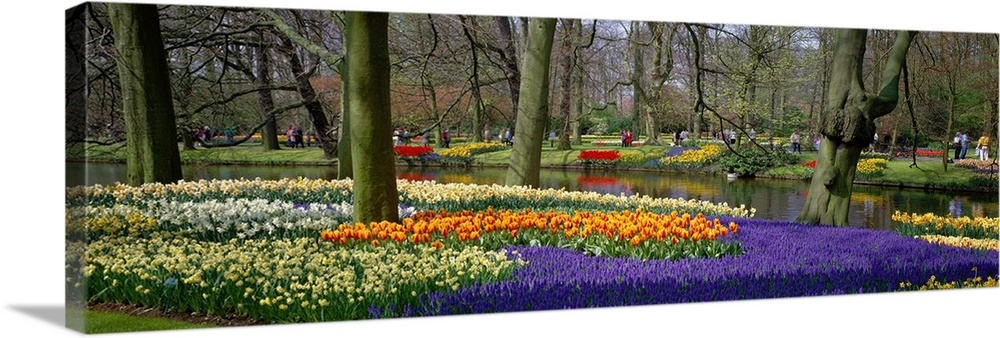 Large Solid-Faced Canvas Print Wall Art Print 48 x 16 entitled Keukenhof Garden Lisse The Netherlands Solid-Faced Canvas Print entitled Keukenhof Garden Lisse The Netherlands.  Multiple sizes available.  Primary colors within this image include Orange, Brown, Light Yellow, Black.  Made in the USA.  Satisfaction guaranteed.  Archival-quality UV-resistant inks.  Canvas is handcrafted and made-to-order in the United States using high quality artist-grade canvas.  Archival inks prevent fading and preserve as much fine detail as possible with no over-saturation or color shifting.