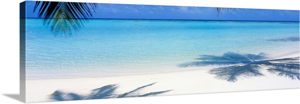 Large Solid-Faced Canvas Print Wall Art Print 48 x 16 entitled Laguna Maldives Solid-Faced Canvas Print entitled Laguna Maldives.  Panoramic landscape photograph of a tropical beach with palm trees casting shadows in the sand.  Multiple sizes available.  Primary colors within this image include Black, Gray, White, Royal Blue.  Made in USA.  Satisfaction guaranteed.  Inks used are latex-based and designed to last.  Canvas depth is 1.25 and includes a finished backing with pre-installed hanging hardware.  Canvas is handcrafted and made-to-order in the United States using high quality artist-grade canvas.